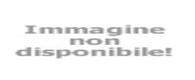 CONVEGNO GIORNATE POLIZIA LOCALE RICCIONE 2017 OFFERTA HOTEL 3 STELLE